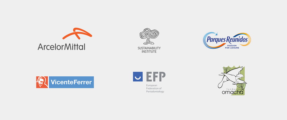 Partner Companies of the Masters of Design and Innovation